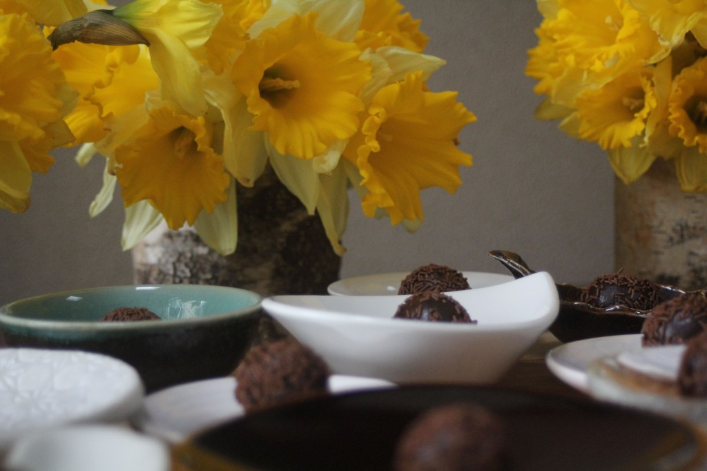 , South American Chocolate Fudge Truffles