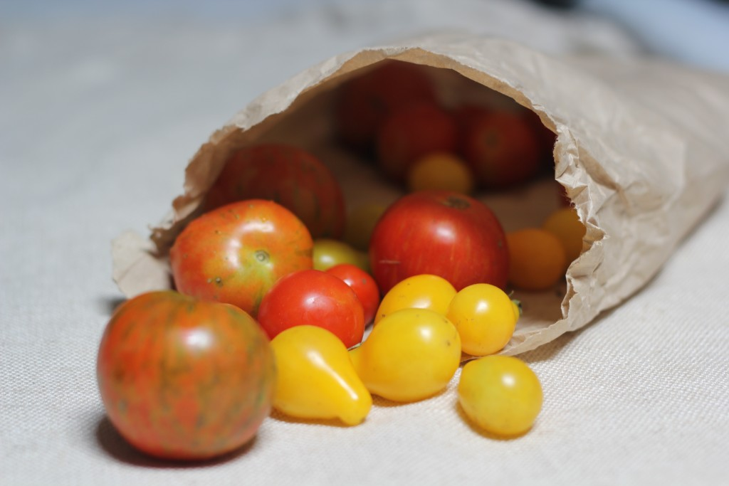 The gift of homegrown tomatoes