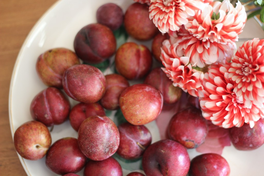 Grateful for plums, flowers and beautiful friends