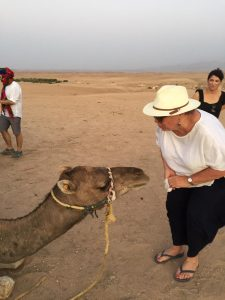 , A majestic and unforgetable Moroccan adventure
