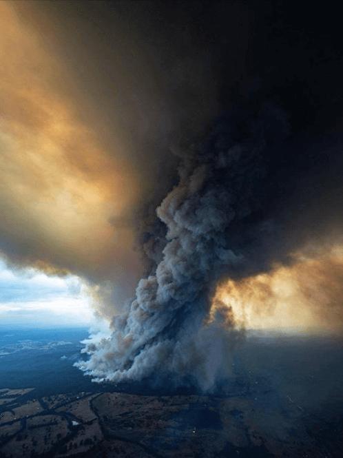 , Bushfire appeal – how we will help