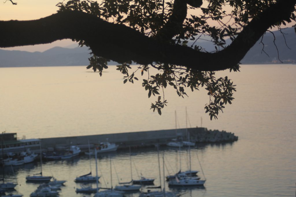 The view from our wonderful accomodation in Sestri Levante