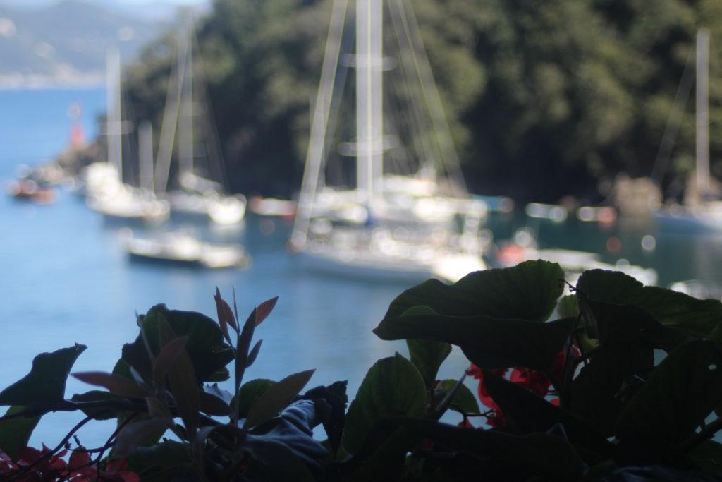Climbing glorious Portofino